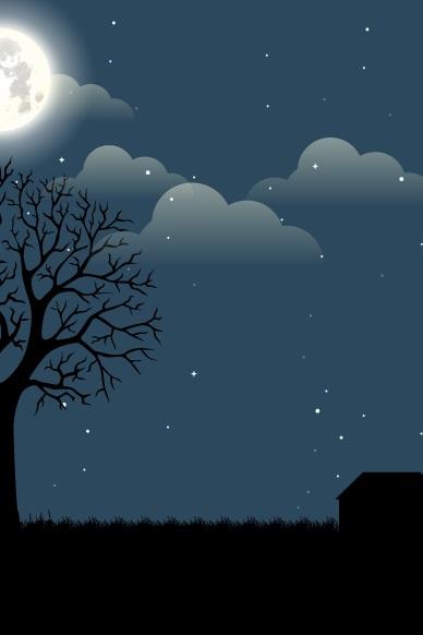 Night-
